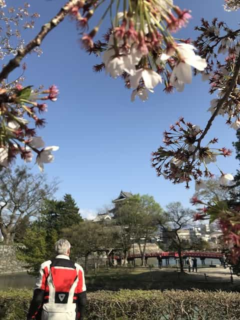 Japan Motorcycle tour ninjatours Matsumoto Arima Onsen cherry blossoms