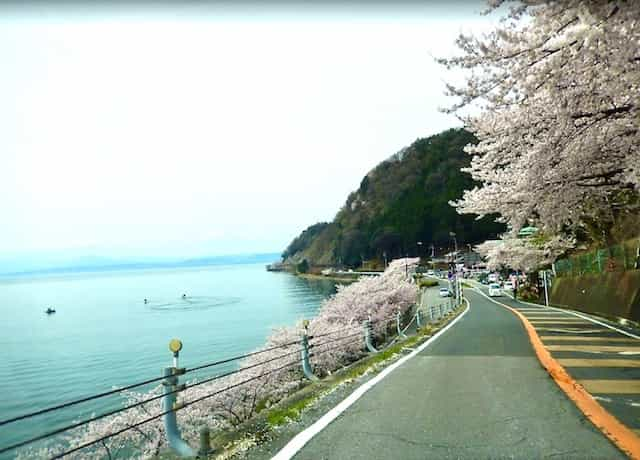 Japan motorcycle tours ninjatours kyoto maizuru cherry blossoms