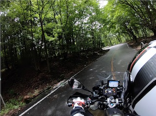 Japan motorcycle tours ninjatours nikko inawashiro tree lined road