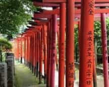 Japan motorcycle tour ninjatours toba kyoto fushimi inari shrine